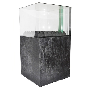 acrylic art display case